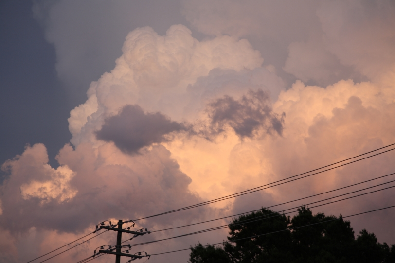 clouds and power lines at sunset