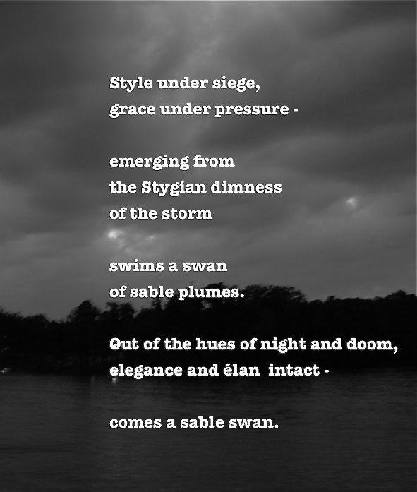 sable swan poem